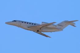 キャスバルさんが、フェニックス・スカイハーバー国際空港で撮影したXOjet 750 Citation Xの航空フォト(飛行機 写真・画像)