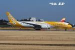 tassさんが、成田国際空港で撮影したスクート 787-9の航空フォト(飛行機 写真・画像)