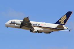 flyskyさんが、成田国際空港で撮影したシンガポール航空 A380-841の航空フォト(飛行機 写真・画像)