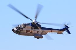 レンタくんさんが、木更津飛行場で撮影した陸上自衛隊 EC225LP Super Puma Mk2+の航空フォト(飛行機 写真・画像)