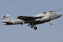 Talon.Kさんが、厚木飛行場で撮影したアメリカ海兵隊 EA-6B Prowler (G-128)の航空フォト(飛行機 写真・画像)