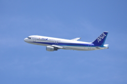 kaz787さんが、伊丹空港で撮影した全日空 A320-211の航空フォト(飛行機 写真・画像)