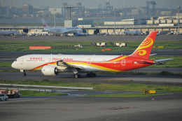 SKY☆101さんが、羽田空港で撮影した海南航空 787-9の航空フォト(飛行機 写真・画像)