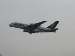 LOVE767さんが、関西国際空港で撮影したシンガポール航空 A380-841の航空フォト(飛行機 写真・画像)