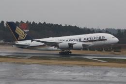 ショウさんが、成田国際空港で撮影したシンガポール航空 A380-841の航空フォト(飛行機 写真・画像)