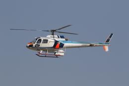 ショウさんが、名古屋飛行場で撮影した中日本航空 AS350B Ecureuilの航空フォト(飛行機 写真・画像)