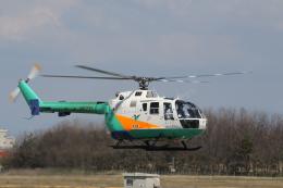 ショウさんが、新潟空港で撮影した東北エアサービス Bo 105CBS-4の航空フォト(飛行機 写真・画像)