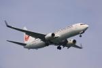 けいとパパさんが、羽田空港で撮影した日本航空 737-846の航空フォト(飛行機 写真・画像)