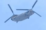 500さんが、自宅上空で撮影した航空自衛隊 CH-47J/LRの航空フォト(飛行機 写真・画像)