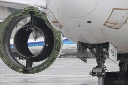 パピヨンさんが、羽田空港で撮影した日本航空 777-346/ERの航空フォト(飛行機 写真・画像)