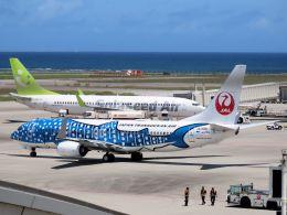 cooymdさんが、那覇空港で撮影した日本トランスオーシャン航空 737-8Q3の航空フォト(飛行機 写真・画像)