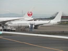 ピーノックさんが、羽田空港で撮影した日本航空 737-846の航空フォト(飛行機 写真・画像)