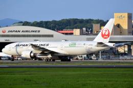 きつねさんが、伊丹空港で撮影した日本航空 777-246/ERの航空フォト(飛行機 写真・画像)