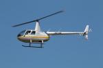 なごやんさんが、名古屋飛行場で撮影した日本法人所有 R44 Raven IIの航空フォト(飛行機 写真・画像)