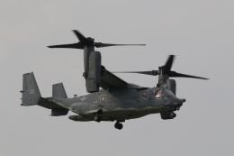 ショウさんが、横田基地で撮影したアメリカ空軍 CV-22Bの航空フォト(飛行機 写真・画像)