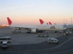 南国の防人さんが、羽田空港で撮影した日本航空 777-346の航空フォト(飛行機 写真・画像)