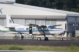 ショウさんが、調布飛行場で撮影したアジア航測 208 Caravan Iの航空フォト(飛行機 写真・画像)