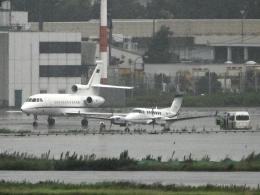 チャレンジャーさんが、羽田空港で撮影したイタリア空軍 Falcon 900EXの航空フォト(飛行機 写真・画像)