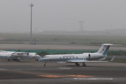 KAZFLYERさんが、羽田空港で撮影した海上保安庁 G-V Gulfstream Vの航空フォト(飛行機 写真・画像)