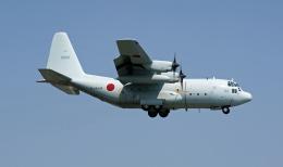 Nobu-oji_NEXUS6さんが、厚木飛行場で撮影した海上自衛隊 C-130Rの航空フォト(飛行機 写真・画像)