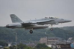デルタおA330さんが、横田基地で撮影したアメリカ海軍 EA-18G Growlerの航空フォト(飛行機 写真・画像)