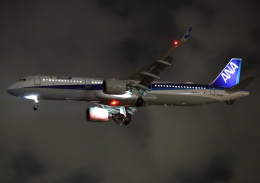 MOHICANさんが、福岡空港で撮影した全日空 A321-272Nの航空フォト(飛行機 写真・画像)