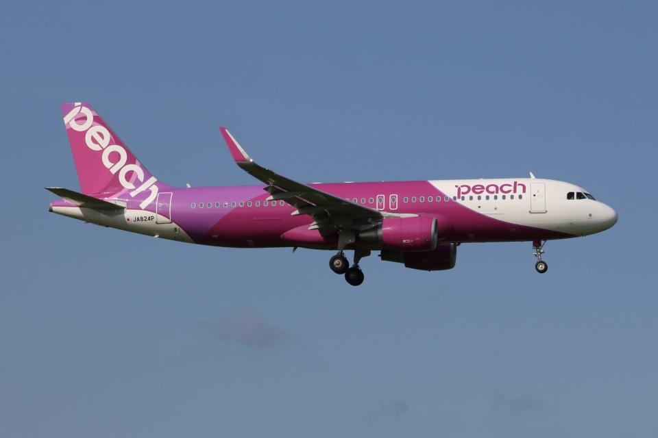 SIさんのピーチ Airbus A320 (JA824P) 航空フォト