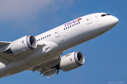 ぱん_くまさんが、成田国際空港で撮影したタイ国際航空 787-8 Dreamlinerの航空フォト(飛行機 写真・画像)