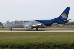 JETBIRDさんが、モントリオール・ピエール・エリオット・トルドー国際空港で撮影したカナディアン・ノース 737-36N(QC)の航空フォト(飛行機 写真・画像)