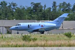 フォト太郎さんが、小松空港で撮影した航空自衛隊 U-125A(Hawker 800)の航空フォト(飛行機 写真・画像)