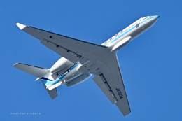 VICENTE AGEMATSUさんが、羽田空港で撮影した海上保安庁 G-V Gulfstream Vの航空フォト(飛行機 写真・画像)
