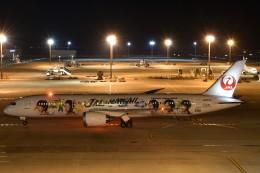 とびたさんが、中部国際空港で撮影した日本航空 787-9の航空フォト(飛行機 写真・画像)