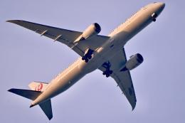 VICENTE AGEMATSUさんが、羽田空港で撮影した日本航空 787-9の航空フォト(飛行機 写真・画像)