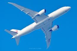 VICENTE AGEMATSUさんが、羽田空港で撮影した日本航空 787-8 Dreamlinerの航空フォト(飛行機 写真・画像)