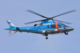 ブルーさんさんが、東京ヘリポートで撮影した警視庁 A109E Powerの航空フォト(飛行機 写真・画像)