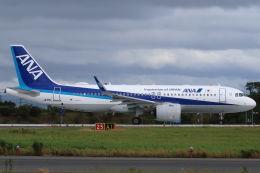 CYGNUS_20-1101さんが、米子空港で撮影した全日空 A320-271Nの航空フォト(飛行機 写真・画像)