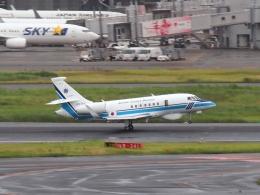 FT51ANさんが、羽田空港で撮影した海上保安庁 Falcon 2000EXの航空フォト(飛行機 写真・画像)