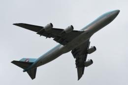 木人さんが、成田国際空港で撮影した大韓航空 747-8HTFの航空フォト(飛行機 写真・画像)