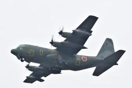 MiYABiさんが、徳島空港で撮影した航空自衛隊 C-130H Herculesの航空フォト(飛行機 写真・画像)