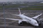 Mr.boneさんが、羽田空港で撮影した日本航空 787-8 Dreamlinerの航空フォト(飛行機 写真・画像)