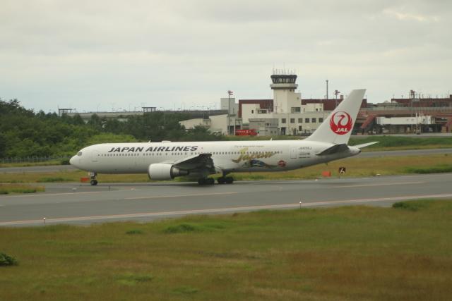 青森空港 - Aomori Airport [AOJ/RJSA]で撮影された青森空港 - Aomori Airport [AOJ/RJSA]の航空機写真(フォト・画像)