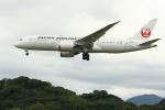 虎太郎19さんが、福岡空港で撮影した日本航空 787-8 Dreamlinerの航空フォト(飛行機 写真・画像)