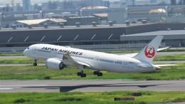 changさんが、羽田空港で撮影した日本航空 787-8 Dreamlinerの航空フォト(飛行機 写真・画像)