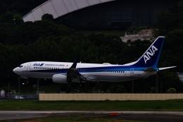 M.airphotoさんが、福岡空港で撮影した全日空 737-881の航空フォト(飛行機 写真・画像)