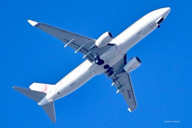 VICENTE AGEMATSUさんが、羽田空港で撮影したJALエクスプレス 737-846の航空フォト(飛行機 写真・画像)