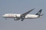 BTYUTAさんが、インディラ・ガンディー国際空港で撮影したエア・インディア 787-8 Dreamlinerの航空フォト(飛行機 写真・画像)