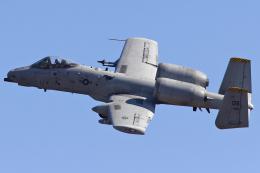 Talon.Kさんが、厚木飛行場で撮影したアメリカ空軍 A-10C Thunderbolt IIの航空フォト(飛行機 写真・画像)
