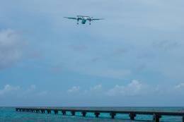 チャッピー・シミズさんが、下地島空港で撮影した海上保安庁 DHC-8-315 Dash 8の航空フォト(飛行機 写真・画像)