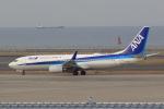 わんだーさんが、中部国際空港で撮影した全日空 737-881の航空フォト(飛行機 写真・画像)