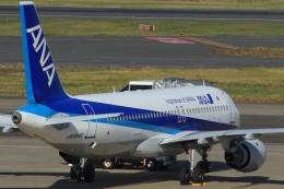 Hiro-hiroさんが、羽田空港で撮影した全日空 A320-211の航空フォト(飛行機 写真・画像)
